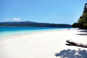 Pulau Peucang, Lebih Baik Dari Phuket
